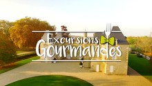 Le vignoble bordelais-Excursions Gourmandes-Aquitaine