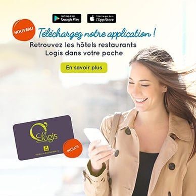Logis 1806 ApplicationMobile FR 388x388 min